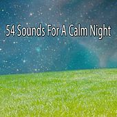 54 Sounds For A Calm Night by Lullaby Land
