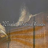 52 Tracks Of Natural Wonder de White Noise Babies