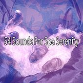 54 Sounds For Spa Serenity von Best Relaxing SPA Music