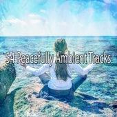54 Peacefully Ambient Tracks de Meditación Música Ambiente