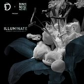 Illuminate (Onset Audio x Din Is Noise Records) - EP by Various Artists