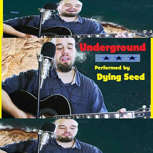 Underground by Dying Seed