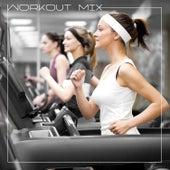 Workout Mix de Various Artists