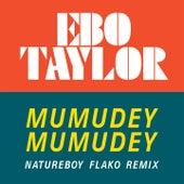 Mumudey Mumudey (Natureboy Flako Remix) von Ebo Taylor
