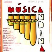 Bolivia y su... Música Andina by Various Artists