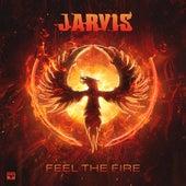 Feel The Fire de Various Artists