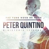 Faz Tudo Novo de Novo by Peter Quintino