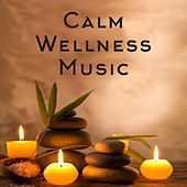 Calm Wellness Music by Nature Sounds (1)