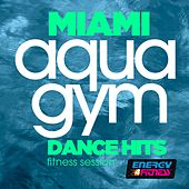 Miami Aqua Gym Dance Hits Fitness Session by Various Artists