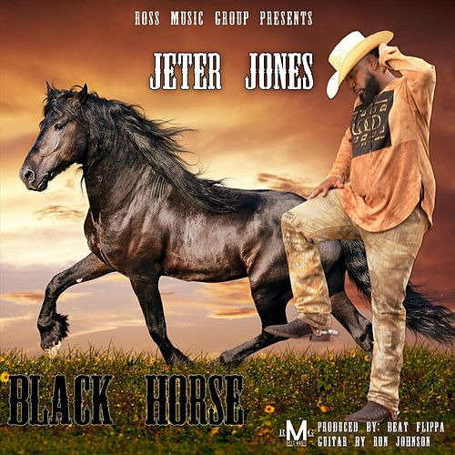 Black Horse by Jeter Jones