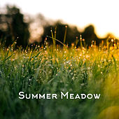 Summer Meadow by Yoga Music