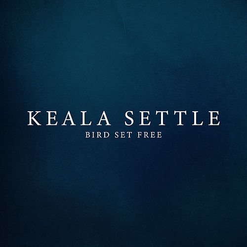 Bird Set Free by Keala Settle