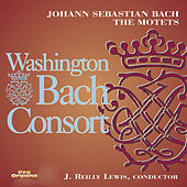 Bach: The Motets by Washington Bach Consort