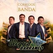 Corridos Con Banda by Los Alegres Del Barranco