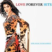 Love Forever Hits by Various Artists