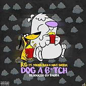 Dog a Bitch (feat. Young Rich & Mike Sherm) von R G