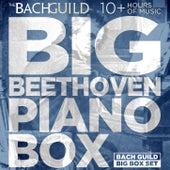 Big Box of Beethoven Piano by Various Artists