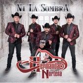 Ni La Sombra by La Hermandad Norteña