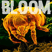 Parallel Minor by Bloom