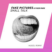 Small Talk (HUGEL Remix) de Tiger Park