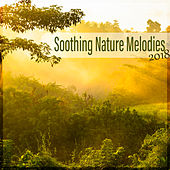 Soothing Nature Melodies 2018 by Sounds Of Nature