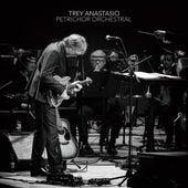 Petrichor Orchestral (Orchestral) by Trey Anastasio