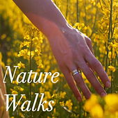 Nature Walk Sounds by Various Artists