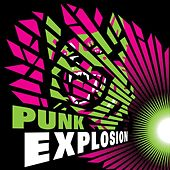Punk Explosion von Various Artists