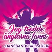 Jag trodde änglarna fanns - Dansbandsballader by Various Artists