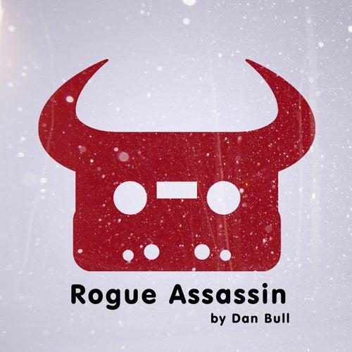 Rogue Assassin by Dan Bull