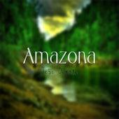 Amazona de João Donato