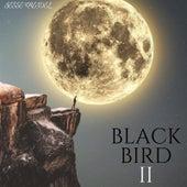 Blackbird II by Jesse Kreidel