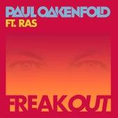 Freak Out (Remix) by Paul Oakenfold