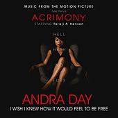 I Wish I Knew How It Would Feel to Be Free von Andra Day