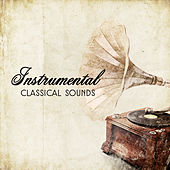 Instrumental Classical Sounds by Reading Music Academy