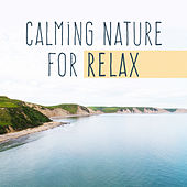 Calming Nature for Relax by Nature Sound Series