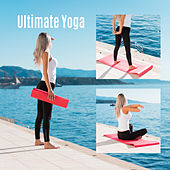 Ultimate Yoga de Ambient Music Therapy