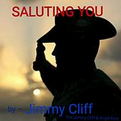 Saluting You by Teressa Dykes