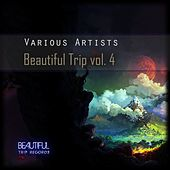 Beautiful Trip, Vol. 4 by Various Artists