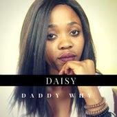 Daddy Why by Daisy