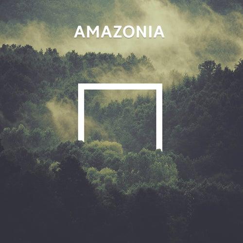 Amazonia de Various