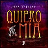 Quiero Que Seas Mía by Juan Treviño