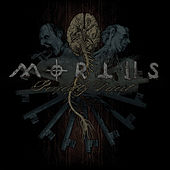 Perfectly Defect by Mortiis