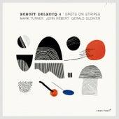 Spots on Stripes by Benoit Delbecq 4
