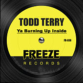 Ya Burning up Inside by Todd Terry