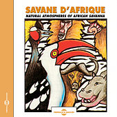 African Savanna by Various Artists