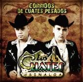 Corridos De Cuates Pesados by Los Cuates De Sinaloa