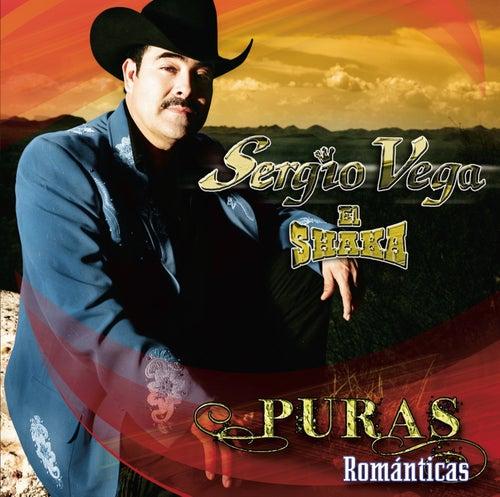 Puras Románticas by Sergio Vega Y Sus Shakas Del Norte