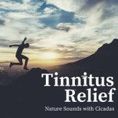 Tinnitus Mask: Relaxing Cicada & Nature Sounds - Single de Nature Sounds Nature Music (1)