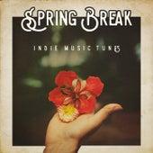 Spring Break Indie Music Tunes by Various Artists